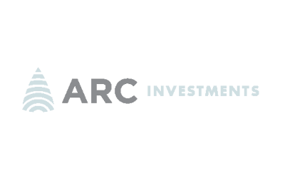 African Rainbow Capital Investments Limited